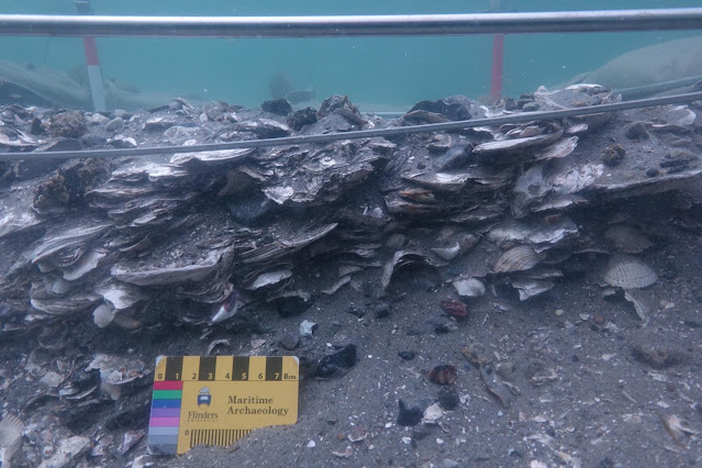 Shell middens rewrite history of submerged coastal landscapes in North America & Europe