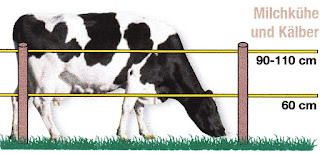 Villanypásztor rendszerek szarvasmarhákhoz