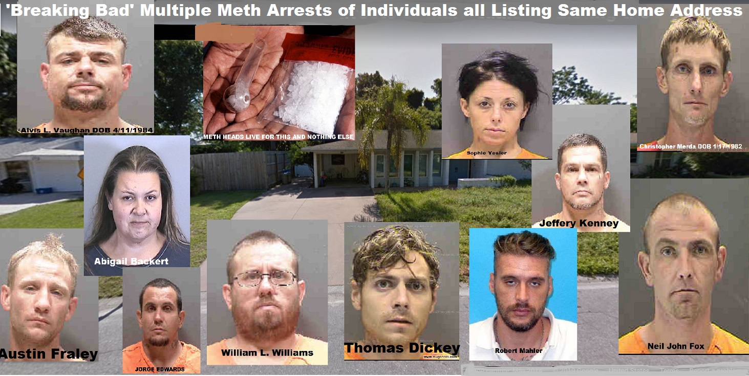 Better Call Bill Warner Investigations Sarasota Fl