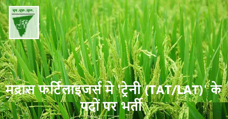 Madras Fertilizers jobs 2019