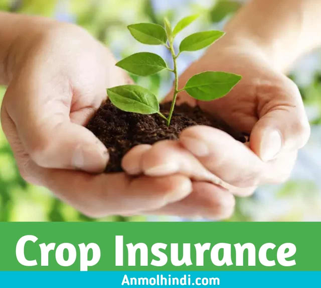 What is Crop Insurance, Crop Insurance in Hindi