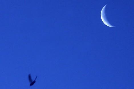 صحافة اكادير بريس: رمضان 29 يوما وعيد الفطر يحلّ الأحد المقبل