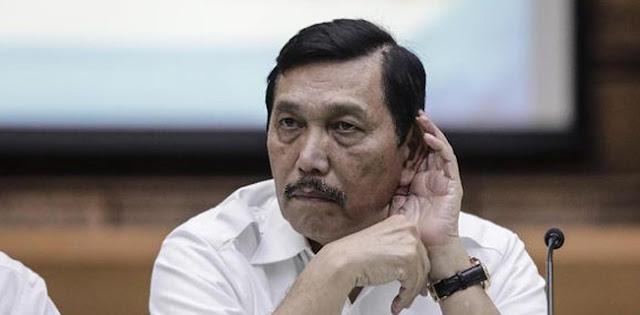 Kebijakan Luhut Rugikan Negara Puluhan Triliun, Faisal Basri Minta Jokowi Pecat