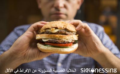 الخلايا العصبية المسؤولة عن الإفراط في الأكل
