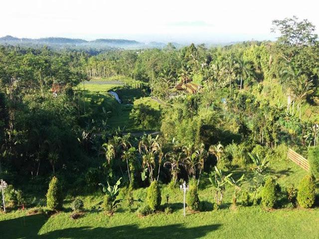 Lingkungan Sekitar Hotel Queen Garden Di Purwokerto