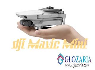 Spesifikasi Drone DJI Mavic Mini [Terbaru 2019]