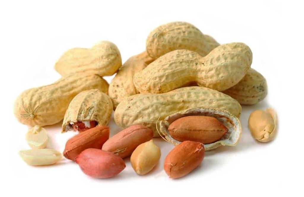 11 Benefícios do Amendoim à Saúde