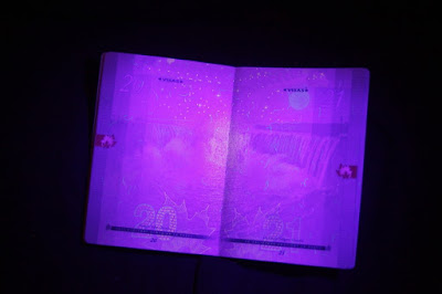 photography of passport page in ultraviolet light