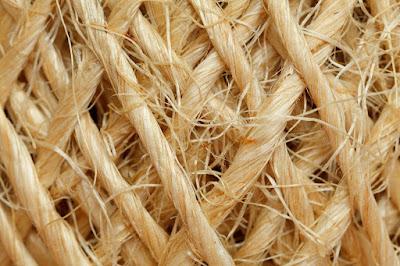 Textile Sphere- Hemp fiber Processing