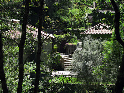 casa de pedras em meio à vegetação