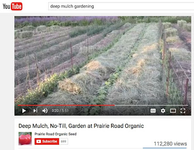 Click to watch our video on Deep, Mulch, No-Till Gardening