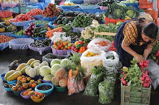 http://vnoticia.com.br/noticia/2830-prefeitura-de-sfi-abre-chamada-publica-para-a-agricultura-familiar
