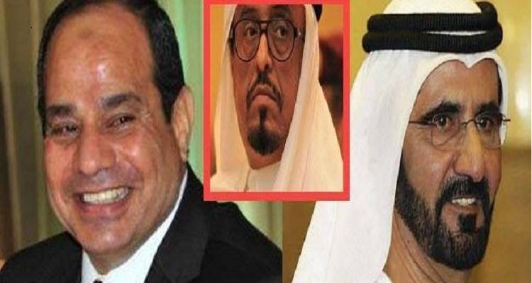 الامارات العربية تبشر مصر ببشرى سارة جدا تعيد الروح إلى الشعب المصري من جديد