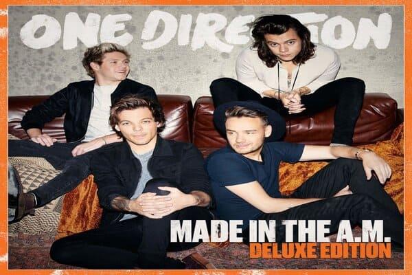 Lirik Lagu One Direction Walking In The Wind dan Terjemahan