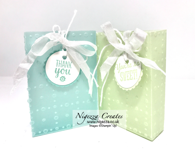 Nigezza Creates with Stampin' Up! Facebook Live Replay: So Very Vellum Gift Bag