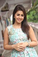 Nikki Galrani at Prema leela pelli gola trailer Launch ~  Exclusive 044.JPG