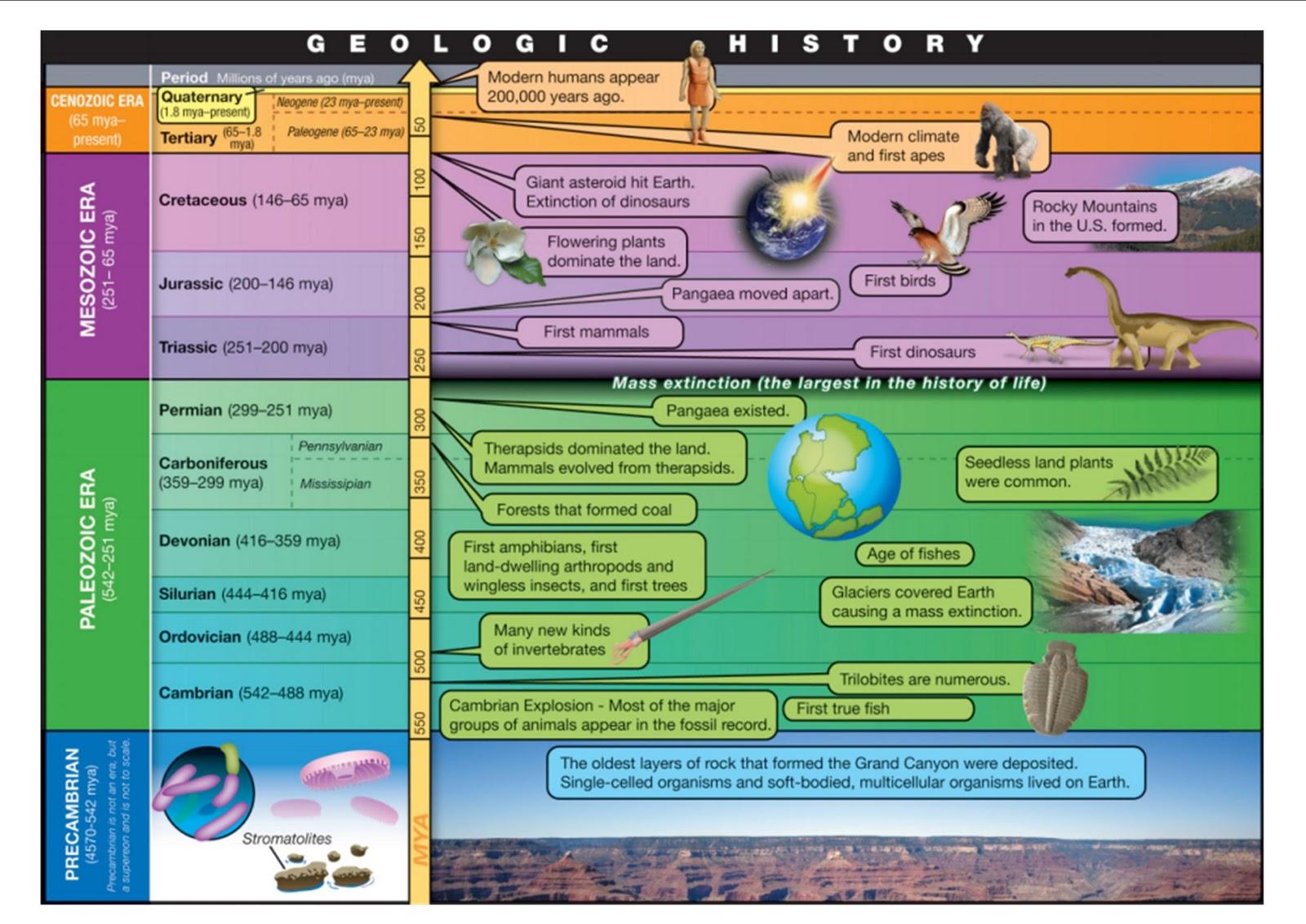 Ms Slifka S Black Hole Geologic Time Webquest