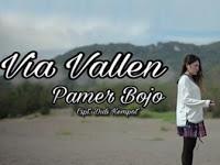 yang di distribusikan oleh label Viva Management ini masih berupa Single Lirik Lagu Via Vallen - Pamer Bojo