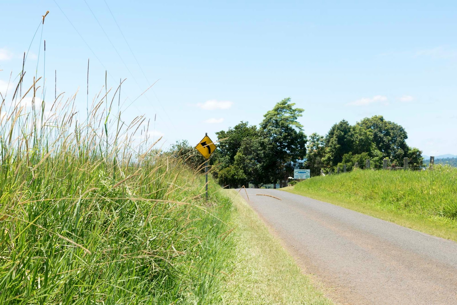 driving through the atherton tablelands