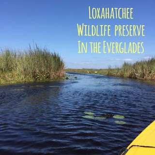 https://www.fws.gov/refuge/arm_loxahatchee/