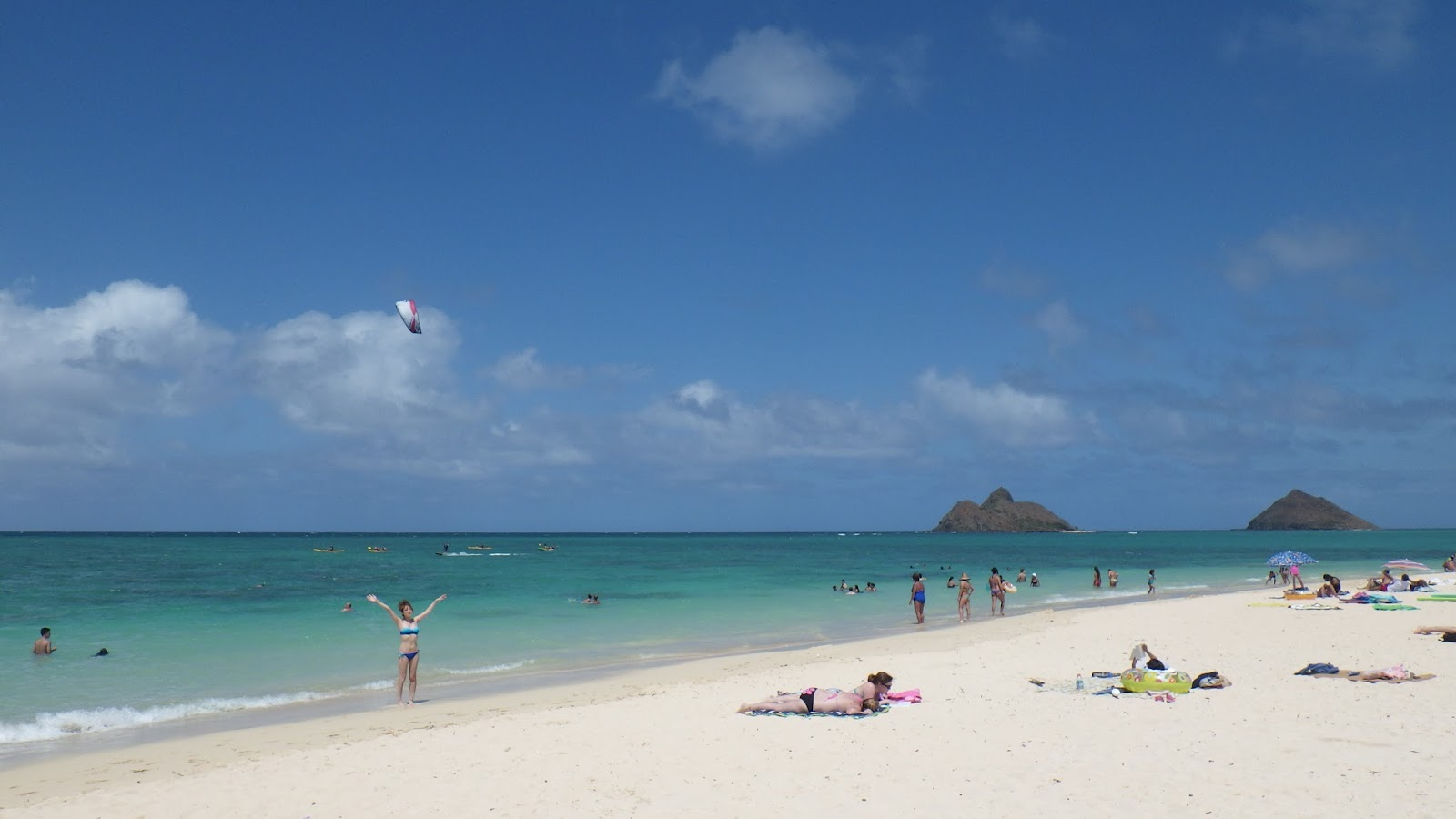 Frogma Hawaii 2015 Day 4 Part 2 A Nice Assortment Of Stuffs