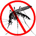25th April was observed as World Malaria Day