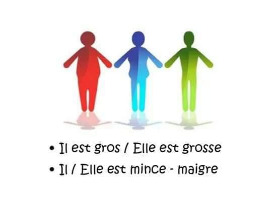ملخصات لغة فرنسية تعابير في وصف شخص   la description d'une personne