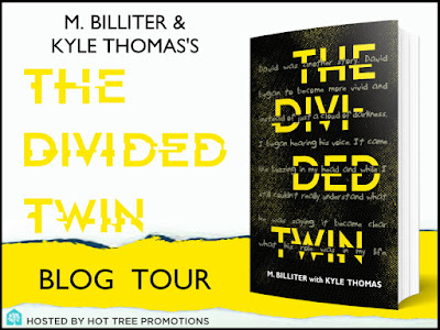 The Divided Twin Blog Tour