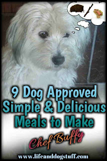 9 Dog Approved Simple and Delicious Meals to Make - Chef Buffy