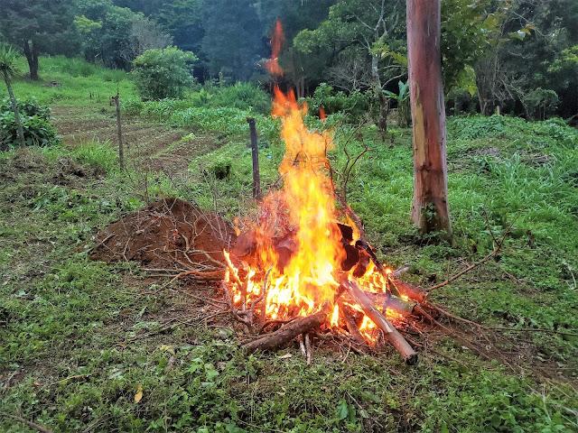 fire ade costa rica