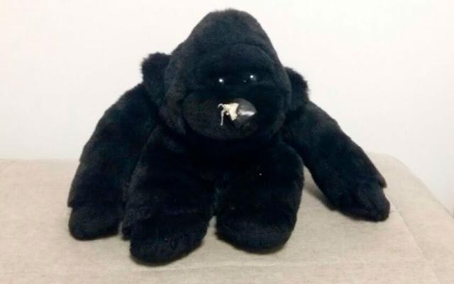 Gorila de pelúcia com nariz de couro, estragado