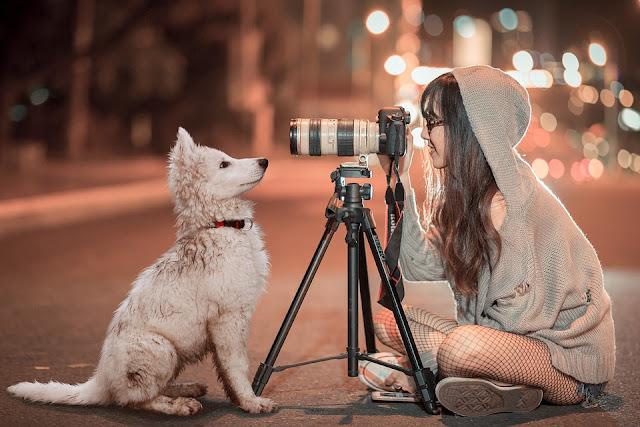 cewek foto anjing kamera dslr canon tripod di pinggir jalan