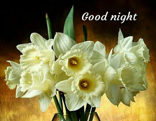 good night images with beautiful flowers