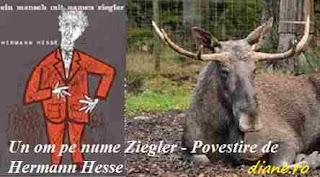 Povestire de Hermann Hesse - Un om pe nume Ziegler
