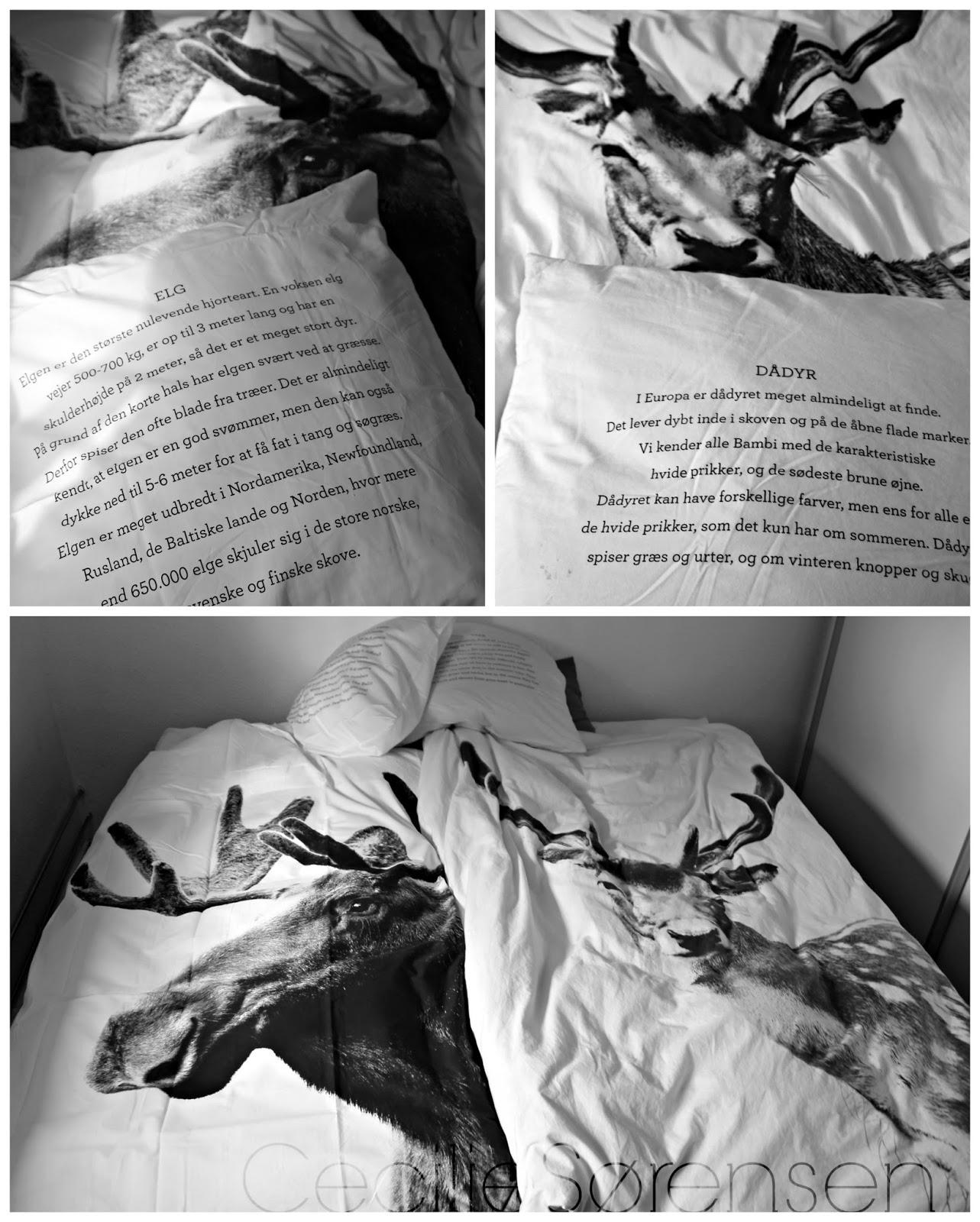 føtex sengetøj Glimmer skuffen: By Nord sengetøj føtex sengetøj