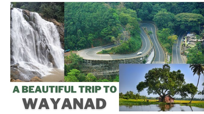 Wayanad Travel Guide, Best Tourist Places in Wayanad - Sumeriya Holidays