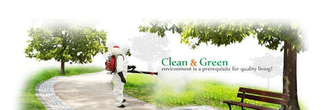 Pest Control Services in Baroda