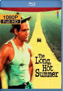 Noche Larga Y Febril[1958] [1080p BRrip] [Latino- Ingles] [GoogleDrive] LaChapelHD