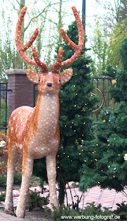 Der Weihnachtshirsch von Bad Laer