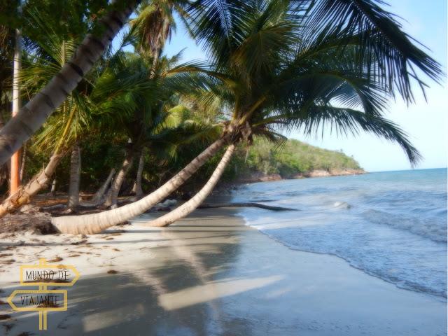 Manchenel Bay ou Playa de Manzanillo Providencia