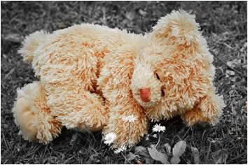 A teddy bear laying on grass