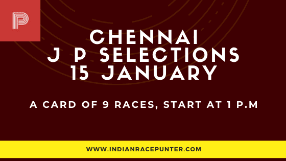 Chennai Jackpot Selections 15 January, Jackpot Selections by indianracepunter,