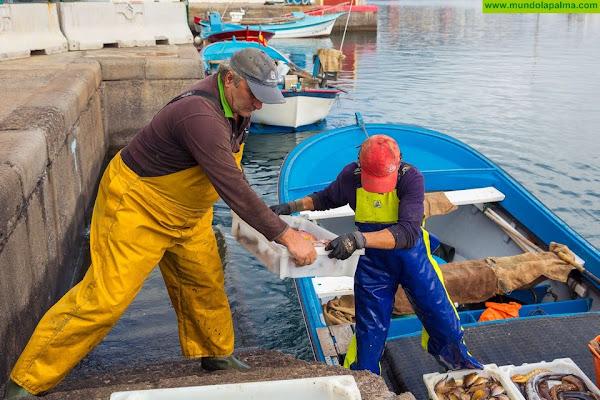 """CC-PNC acusa al Gobierno de dividir al sector pesquero canario para """"contentar"""" a Madrid"""