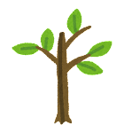 木の成長過程のイラスト4