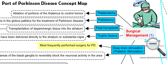 Surgical Management of Parkinson Disease - Zoom out - Pharmacotherapy