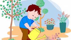 Tại sao buổi trưa nóng nực nắng gắt không nên tưới cây