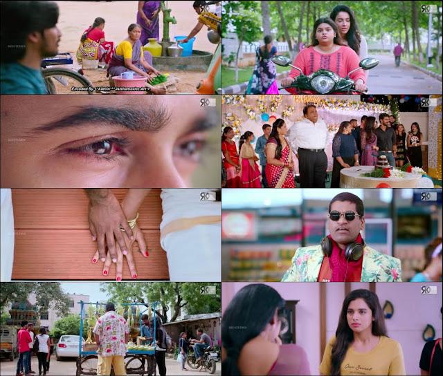 Paper Boy 2018 Hindi Dubbed 720p WEBRip