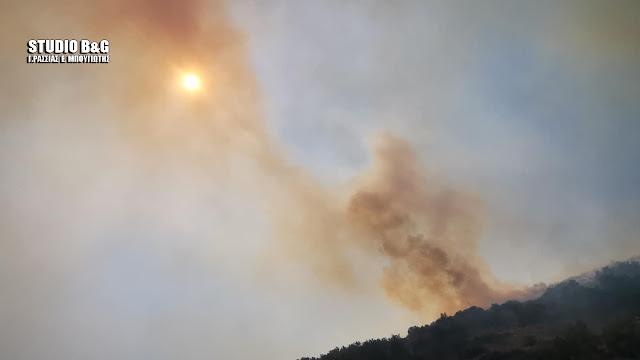 Πολύ υψηλός, κατηγορίας 4 ο κίνδυνος πυρκαγιάς την Τρίτη 27/7 στην Αργολίδα