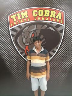 Karena Judi Togel, Warga Pasirian Ditangkap Tim Cobra