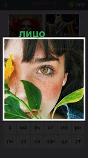 655 слов лицо девушки с веснушками за листьями 10 уровень